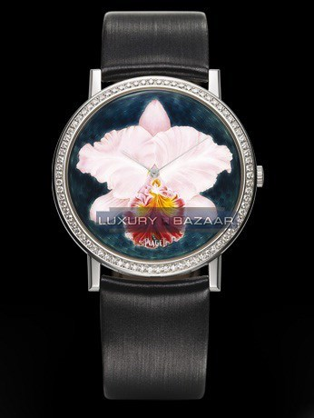 Altiplano Diamond Profusion Orchid Watch G0A34242