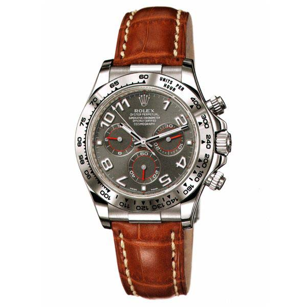 Daytona White Gold 116509 dkmr