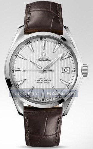 Seamaster Aqua Terra Chronometer 231.13.42.21.02.001